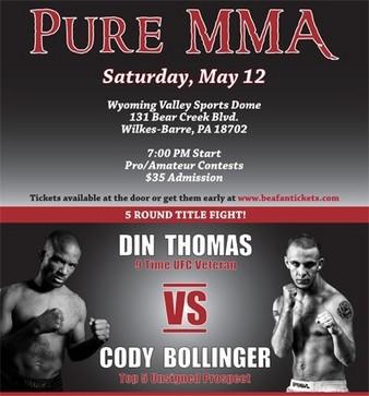 Pure MMA 2