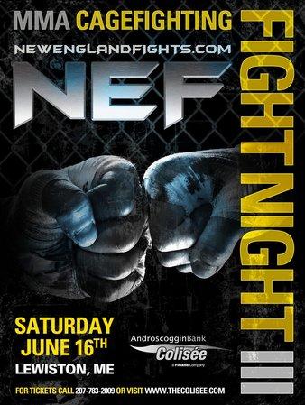 Fight Night MMA 3