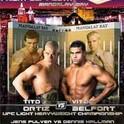 UFC 33