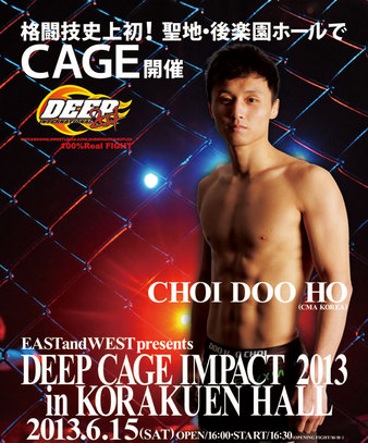 DEEP Cage Impact 2013