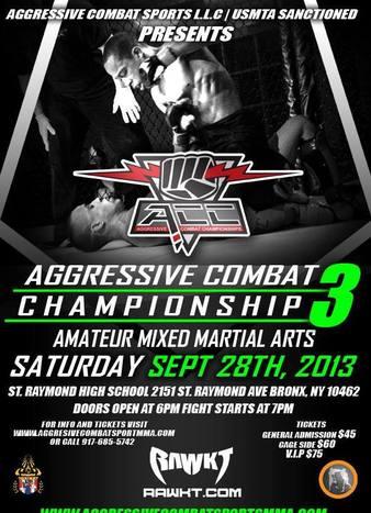 Aggressive Combat 3