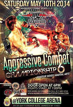 Aggressive Combat 6
