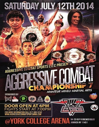 Aggressive Combat 7