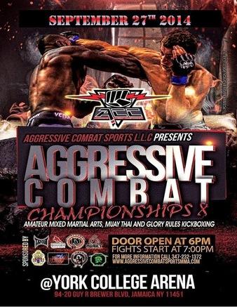 Aggressive Combat 8