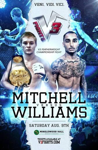V3 Fights