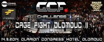 GCF Challenge