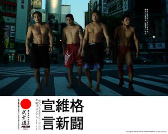 Pride Bushido 7