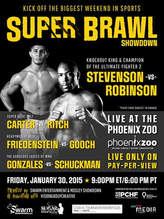 Super Brawl Showdown 1