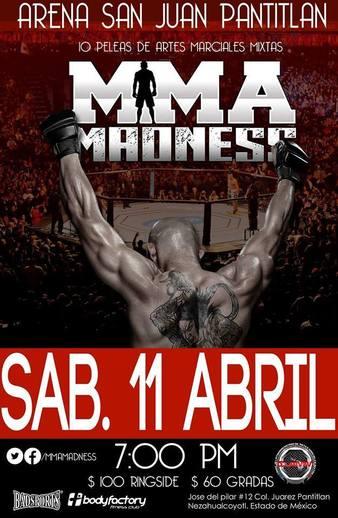 MMA Madness 4