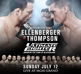 The Ultimate Fighter 21 Finale