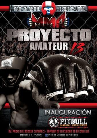MMA Proyecto Amateur 13