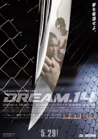 Dream 14