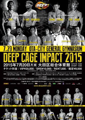 DEEP Cage Impact 2015