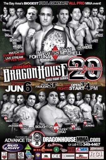 Dragon House 20