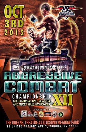 Aggressive Combat 12