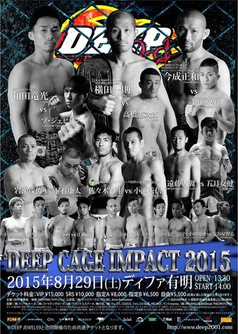 DEEP Cage Impact 2015