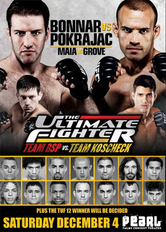The Ultimate Fighter 12 Finale