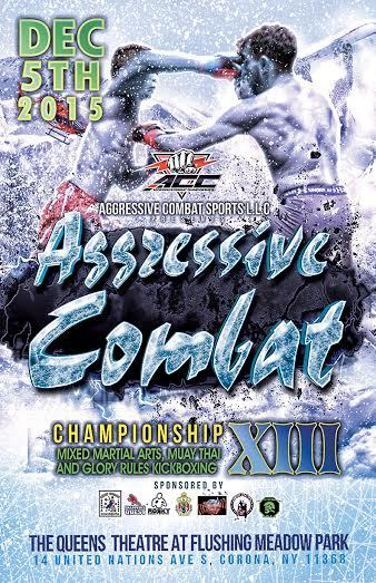 Aggressive Combat 13