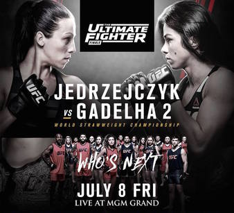 The Ultimate Fighter 23 Finale