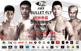 Bullet Fly FC 4