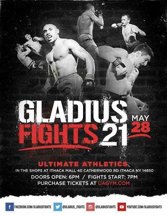 Gladius Fights 21