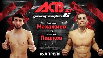 Absolute Championship Berkut 33