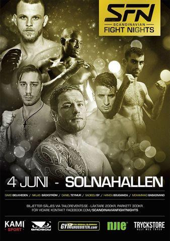 Scandinavian Fight Nights 1