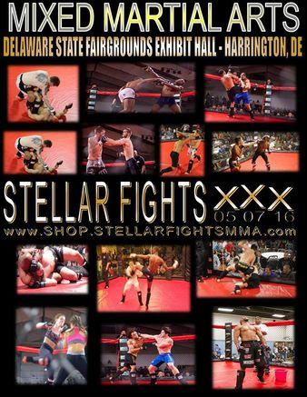 Stellar Fights 30