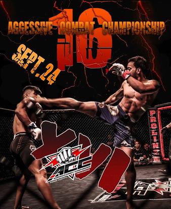 Aggressive Combat 16