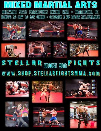 Stellar Fights 31