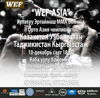 WEF ProfFight 11
