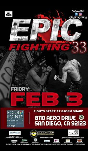 Epic Fighting 33