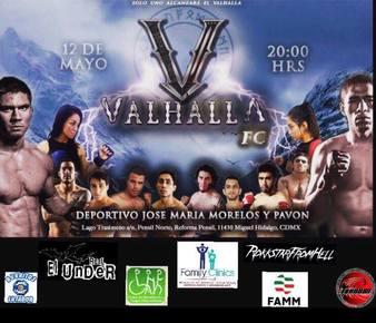 Valhalla Fighting Championship