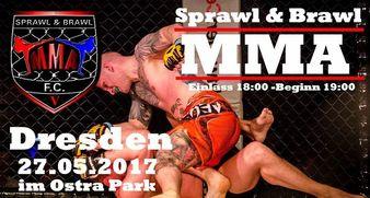 Sprawl & Brawl MMA 5