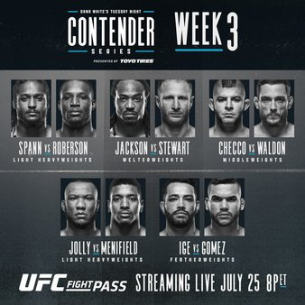 DW's Contender Series 2017