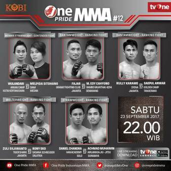 One Pride MMA Fight 12