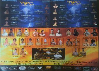 TWC 4: Torneo