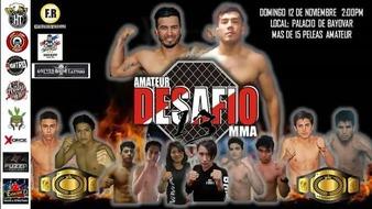 Amateur Desafio MMA 13