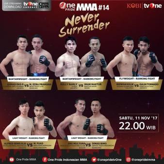 One Pride MMA Fight 14