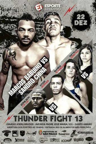 Thunder Fight 13