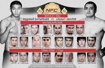 Naiza Fighting Championship 12