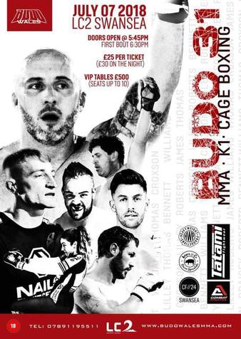 Budo Fighting Championships 31