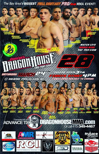Dragon House 28