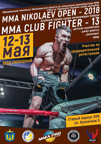 MMA Club Fighter 13