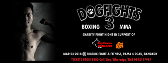 Dogfights Boxing & MMA 3