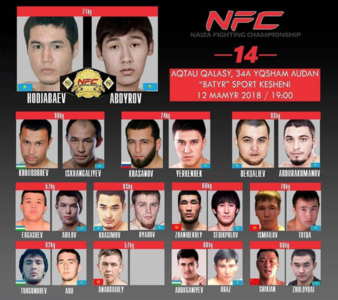 Naiza Fighting Championship 14