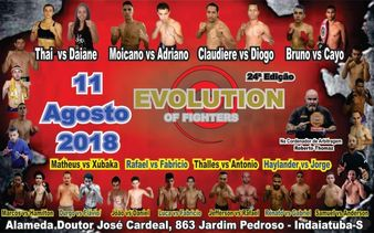Evolution of Fighters 24