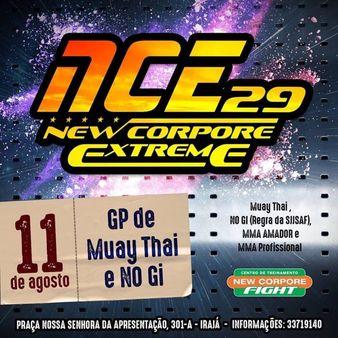 NCE 29