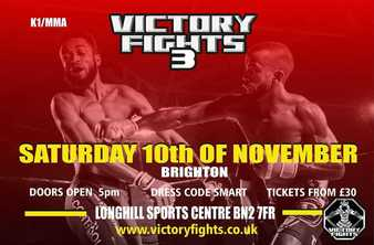 Victory Fights 3