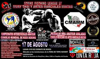 Strike Fighting League